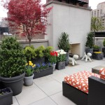 Townhouse Gardening and Landscaping- Top 3 Reasons Why Your Property Needs It