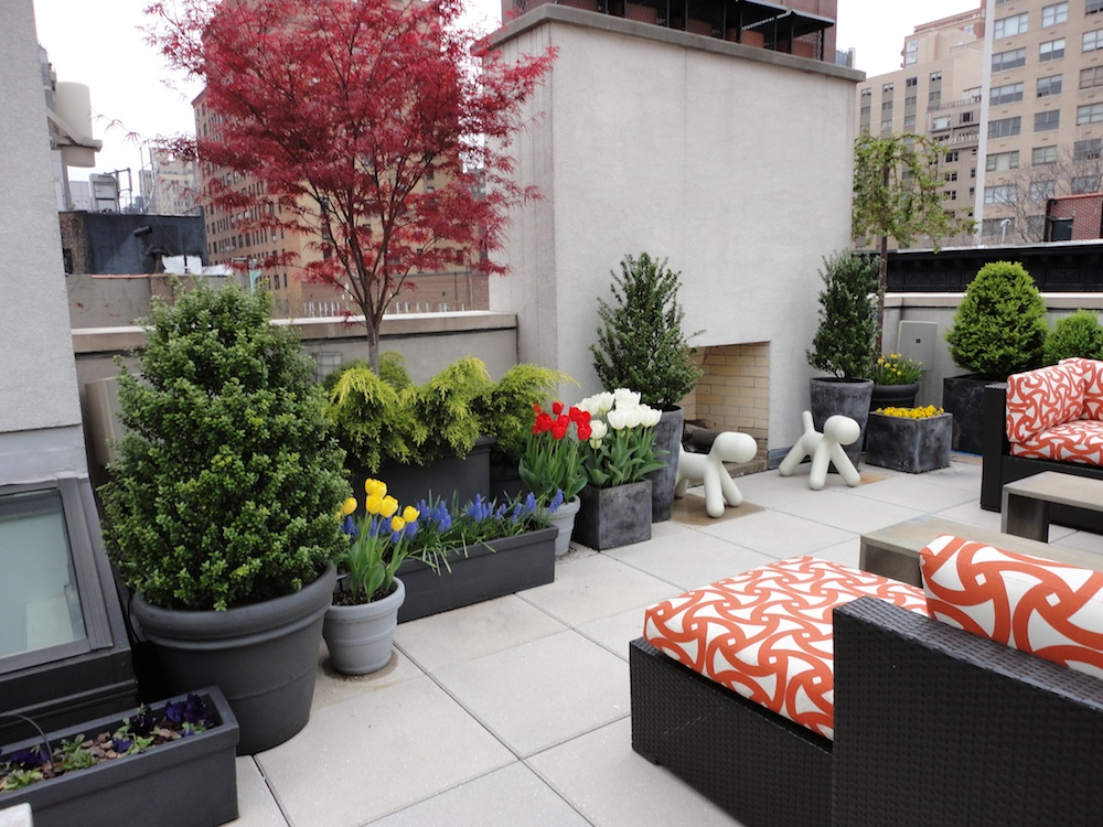 Townhouse gardening and landscaping top 3 reasons why for Townhouse landscaping